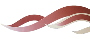 Logo Vishandel de Boer